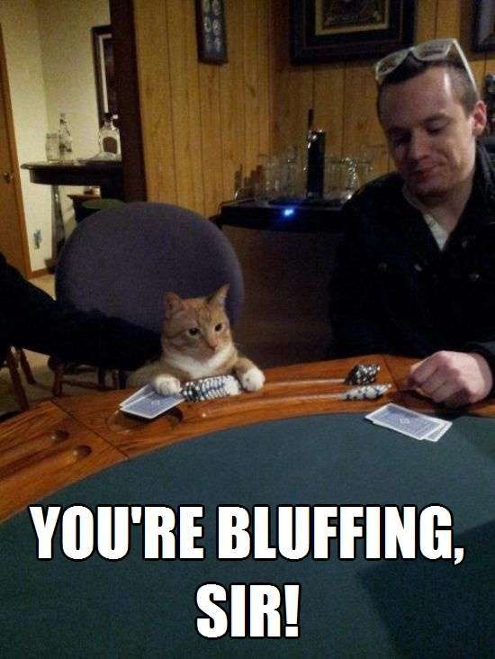 you re bluffing