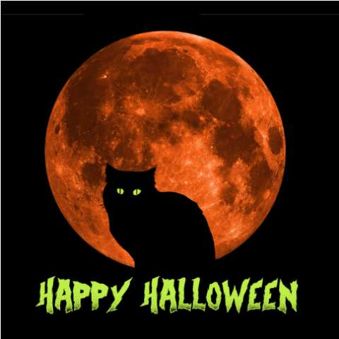 Happy Halloween Full Moon Cat T Shirt