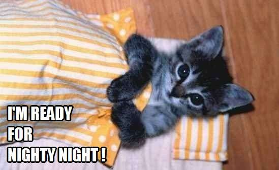 Good night kiss?   Kittyworks